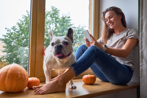 woman using her cell phone while sitting on windowsill french bulldog sits next to her